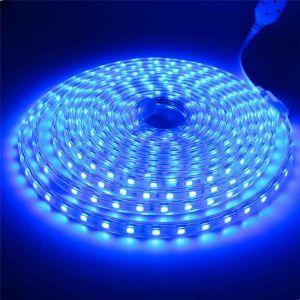 5 meter 220V LED strip, blauw, IP67